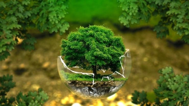 【특별기획】건강한 흙은 국민의 건강을 담보하는 국가 자원⑨